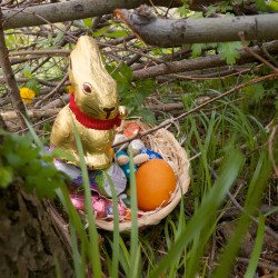 Froher Ostern 2014