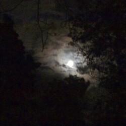 Sommer Mond