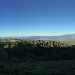 Morgen Panorama ins Tal