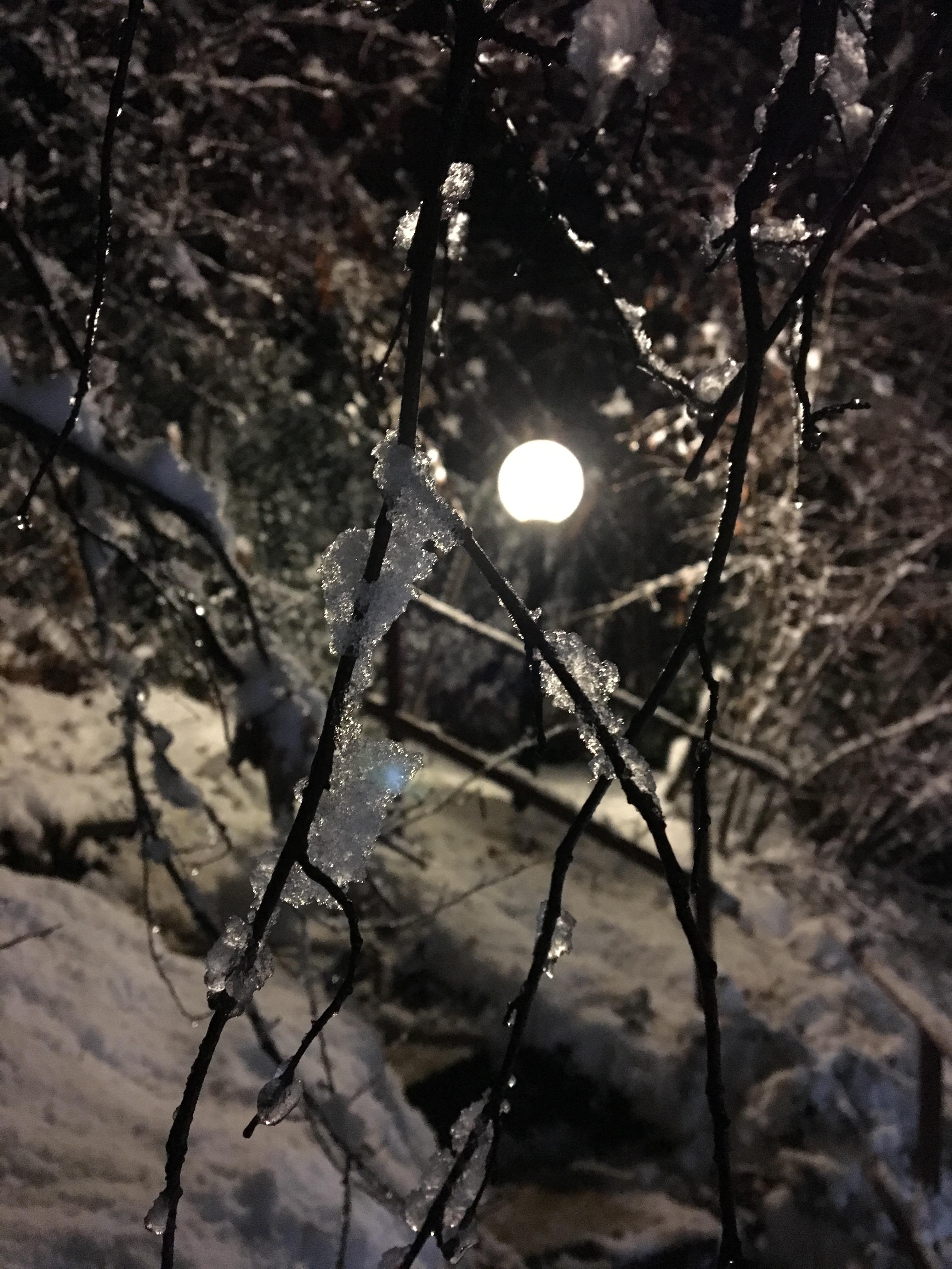 Eis in Winternacht