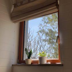 Blick auf Fenster
