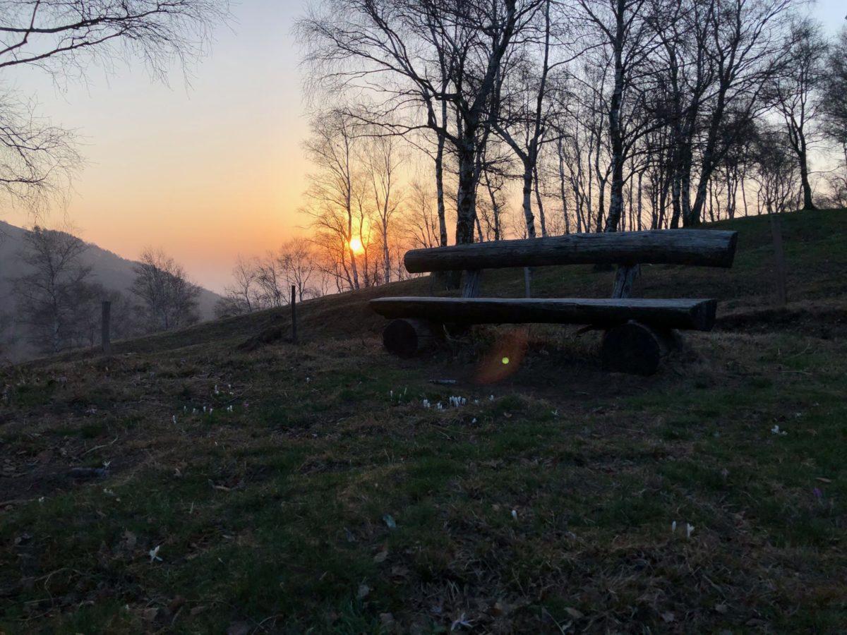Bank und Sonnenaufgang